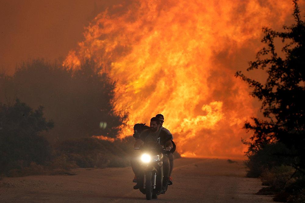 В результате пожаров сгорели десятки тысяч гектаров леса, в том числе вблизи Афин, дым от лесных пожаров во вторник чувствовался по всей столице Греции. На фото - двое мужчин и собака на мотоцикле спасаются от лесных пожаров