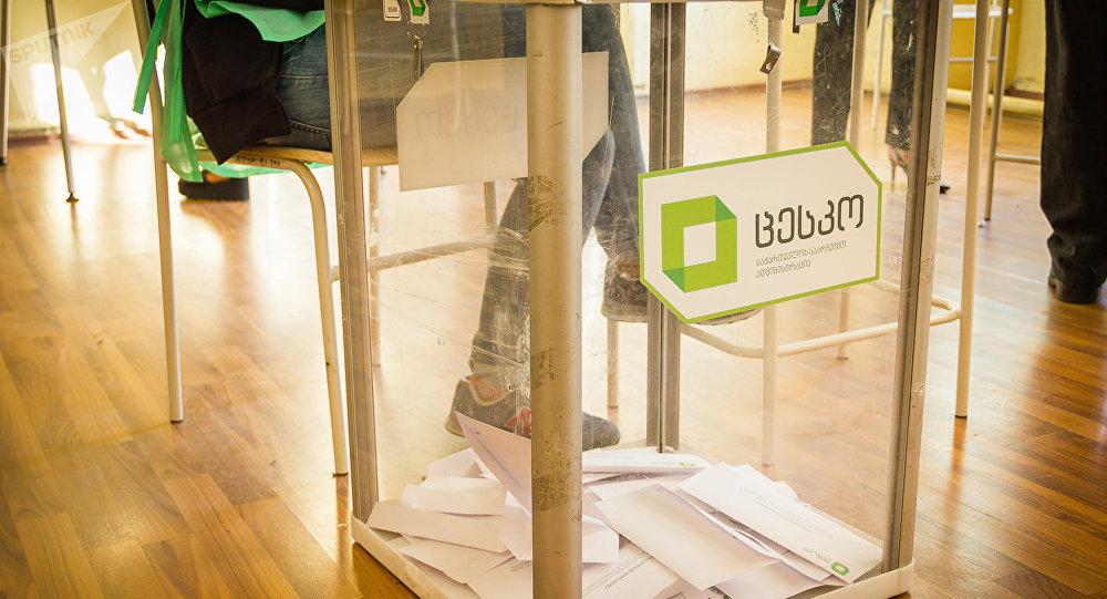 Президент и премьер проголосовали навыборах вГрузии