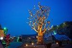 Древо желаний в центре грузинской столицы на площади Европы
