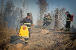 Пожарные в Боржоми-Харагаульском лесу