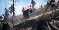 Пожарный работает на месте ЧП в Боржоми-Харагаульском лесу