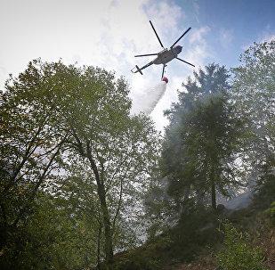 Пожарный вертолет участвует в тушении пожара в Боржоми-Харагаульском лесу