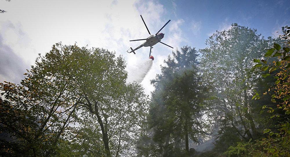 ВГрузии вовремя тушения пожара рухнул вертолет