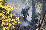 Военнослужащий участвует в ликвидации пожара в Боржоми-Харагаульском лесу