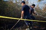 Пожарные на месте ликвидации очага возгорания в лесу