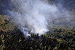 Ликвидация лесного пожара в высокогорной Аджарии