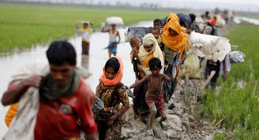 МИДРК обеспокоен положением мусульманской общины вМьянме