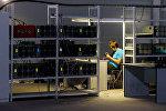 Добыча криптовалюты: почему нужен администратор