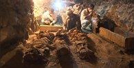Гробница возрастом 3500 лет найдена в Египте