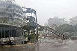 Поваленные ураганом Ирма деревья в Майами, Флорида