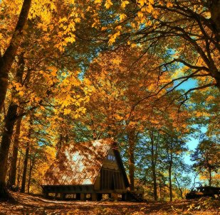 Осень в высокогорье Аджарии