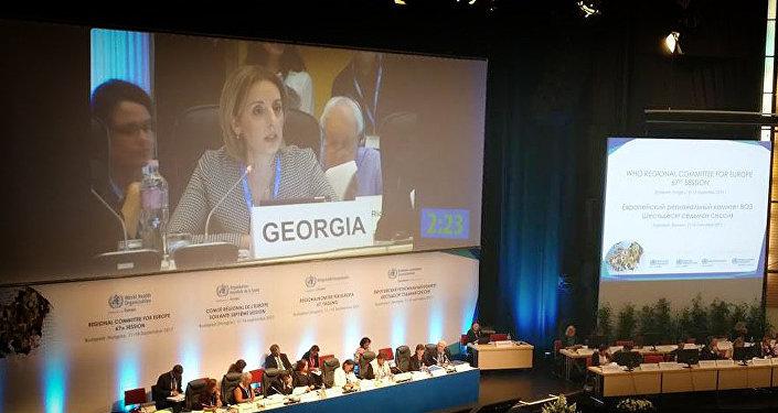 Нино Бердзули на заседании европейского регионального комитета Всемирной организации здравоохранения