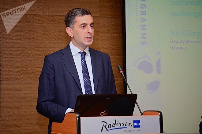 Заместитель министра экономики и устойчивого развития Грузии Георгий Черкезишвили выступает на батумской конференции