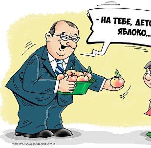 Школьные яблоки познания