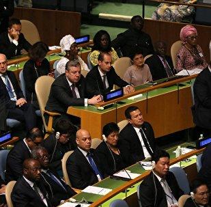 Грузинская делегация на ГА ООН