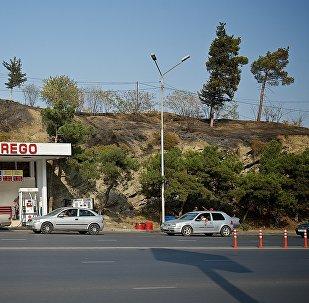 Сгоревшая трава и кустарник рядом с автозаправочной станцией в центре грузинской столицы неподалеку от площади Героев
