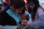 Приют для пострадавших от землетрясения в Мехико животных