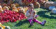 Девочка на выставке цветов на празднике Тбилисоба