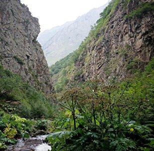 Одно из ущелий в горах Казбегского района