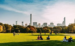 დავით კოვზირიძის მიერ გადღებული ფოტო ნიუ-იორკის ცენტრალ-პარკში