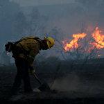 В тушении лесных пожаров в Калифорнии участвуют сотни пожарных, борьба с огнем ведется круглосуточно