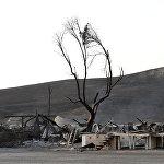 Пейзажи после пожара напоминают апокалиптические картины из фильмов про мир после ядерной катастрофы