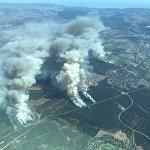 Так выглядят леса в Калифорнии, охваченные огнем, с воздуха