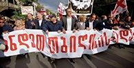 Шествие сторонников ЕНД в грузинской столице