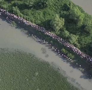 Тысячи беженцев рохинджа пытаются покинуть Мьянму на границе с Бангладеш