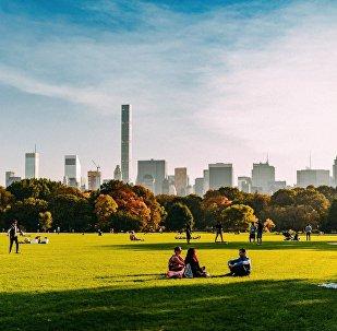 Центральный парк в Нью-Йорке - фотография Давида Ковзиридзе