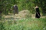 Жители одного из сел региона Шида Картли работают на своем участке