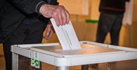 Выборы в местные органы власти