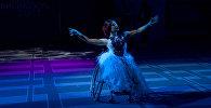 Конкурс красоты среди женщин на инвалидных колясках в Москве