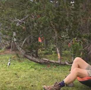 ვიდეოკლუბი: მეთევზე კალიფორნიაში ტბას ელაპარაკება