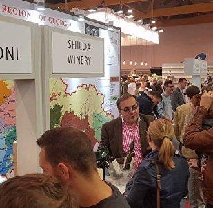 Грузинские вина на международной выставке MEGA VINO 2017