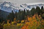 Виды региона Сванети - краски осени. Так выглядит горнолыжный курорт Хацвали
