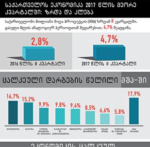 საქართველოს ეკონომიკა 2017: ზრდა და კლება