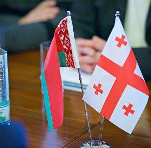 Флаги Беларуси и Грузии за столом переговоров