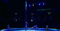 В Грузии представят фантастичекое цирковое шоу
