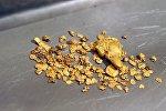 Золото, добытое на участке золотодобычи предприятия, фото из архива