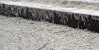 Побережье Англии накрыла морская пена: необычное природное явление