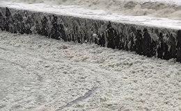 ინგლისის სანაპირო ზღვის ქაფმა დაფარა: იშვიათი ბუნებრივი მოვლენის კადრები