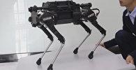 В Китае создали робособаку Laikago