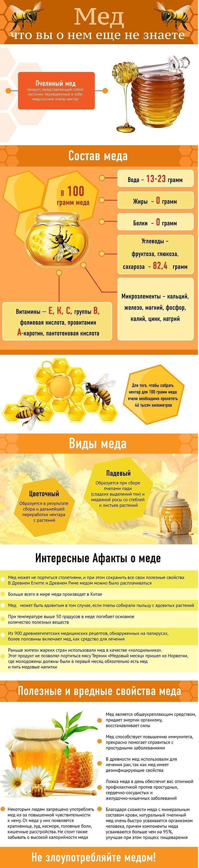 Мед пчелиный – интересные факты, польза и вред