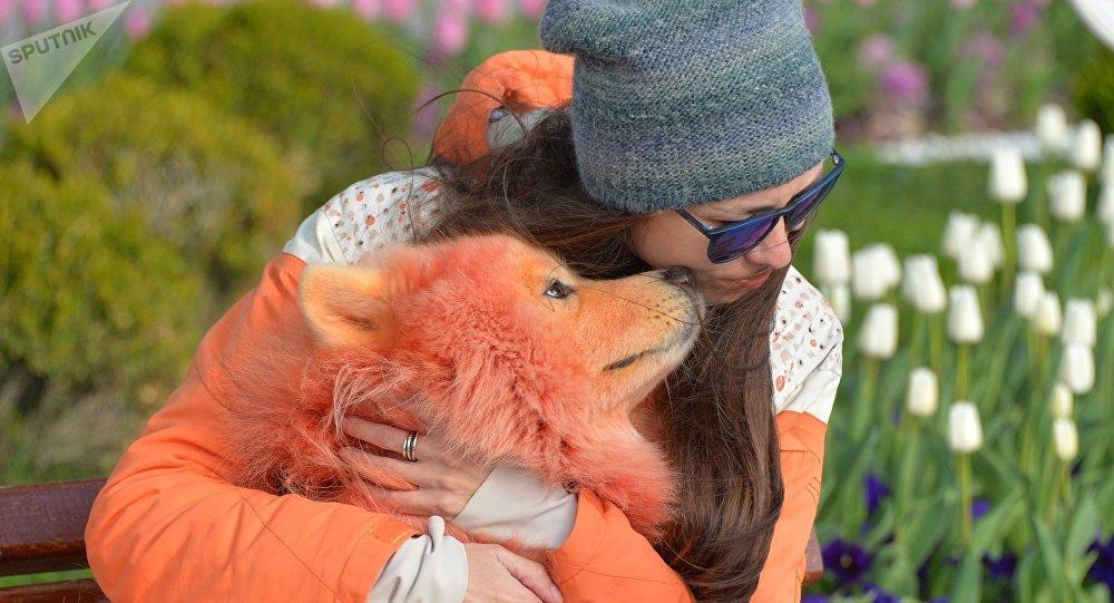 Девушка со своей собакой