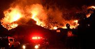 Пожарные у горящего леса в Калифорнии, близ населенного пункта Санта Анна в Вентуре