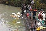 Очистка реки Риони после пожара на Гуматской ГЭС-2
