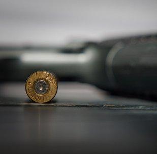 Пистолет и пуля