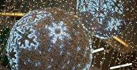 Новогодние украшения в одном из тбилисских торговых центров