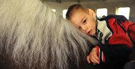 Ребенок катается верхом на лошади